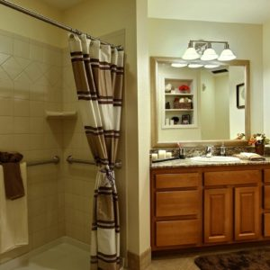 IL Bathroom